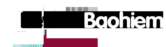 Logo Reviewbaohiem